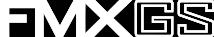 FMX-GS Logo