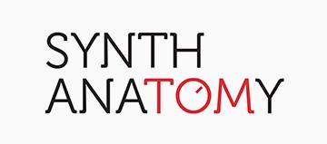 Rotary Synth Anatomy