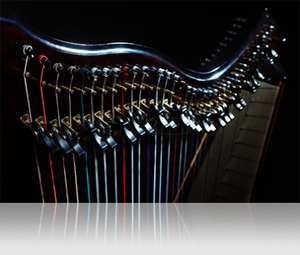 UVI IRCAM Solo Instruments | Plucked Strings