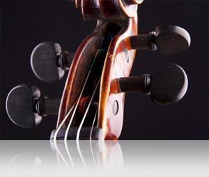 UVI IRCAM Solo Instruments | Strings